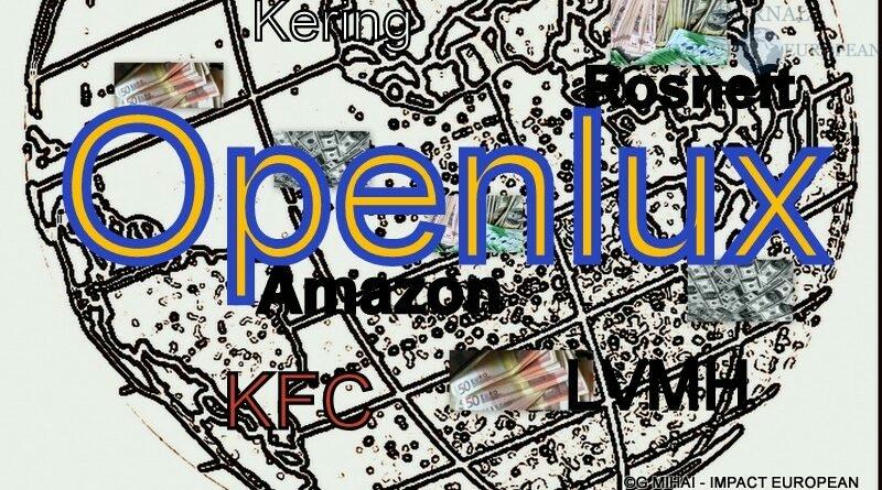 OpenLux – Luxembourg: met en lumière le coffre-fort de l'Europe où les riches et les multinationales cachent leur argent