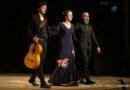 Puntos cardinales: une promenade en Andalousie dans les rythmes flamenco